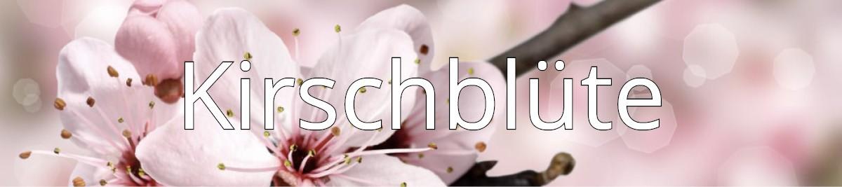 Natur Design Bambus Geschirr Kirschblüte