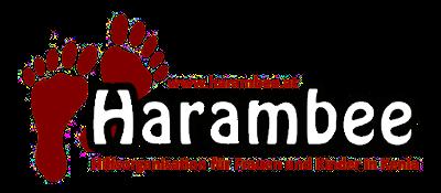 Logo_Harambee_transparent_400px